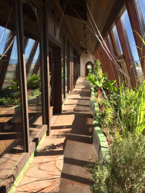 The multifunctional Earthship greenhouse heats the house, filters gray water, provides food and offers a stunning view. Photo by Sterling Stowe.