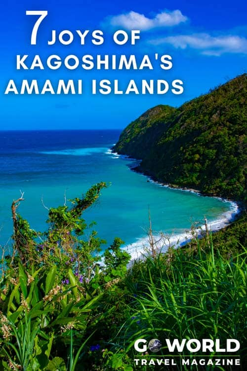 Amami Islands in Japan: 7 Ways to Experience Kagoshima and the Amami Islands in Japan #japantravel #japan #amamiislands #kagoshima #worldheritagesite #traveler #thingstodoinJapan