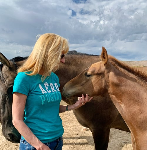 At Our Heritage Ranch in Nebraska, Debbie and I were able to pet the horses. Photo by Janna Graber