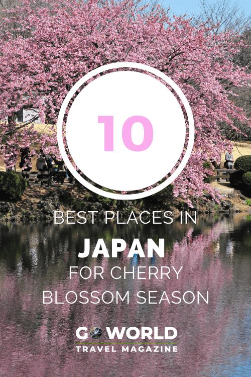 Cherry Blossoms in Japan: Do you love cherry blossoms in spring? Take a trip to these ten places in Japan for the best cherry blossom viewing.