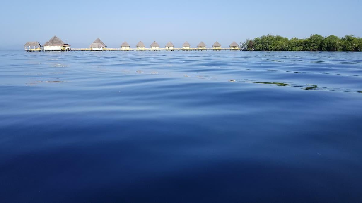 Organic Adventures: Dare to Disconnect in Bocas del Toro, Panama