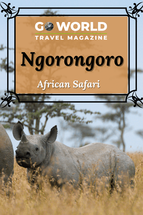 Ngorongoro, Tanzania: Are you looking for a thrilling African safari in Ngorongoro? Take the trip of a lifetime to Ngorongoro to see lions, wildebeest, zebra, hippos and the most elusive of all, the black rhino.