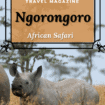 Ngorongoro, Tanzania: Are you ready for an African Safari? Visit Ngorongoro where you can see Africa's most beautiful wildlife including the most elusive beast, the black rhino.