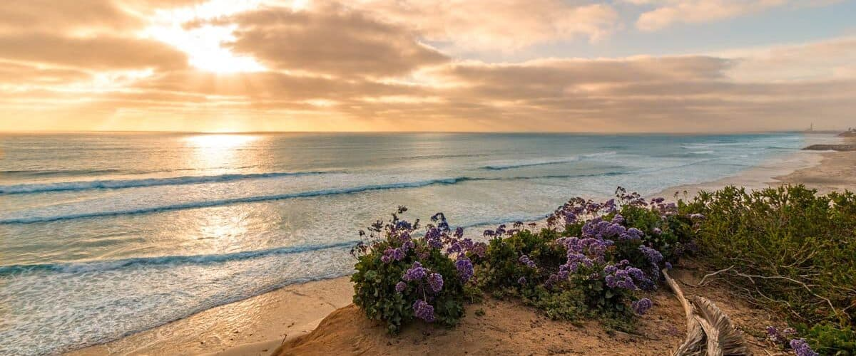 Cardiff State Beach in Southern California. CC Image by Chad McDonald