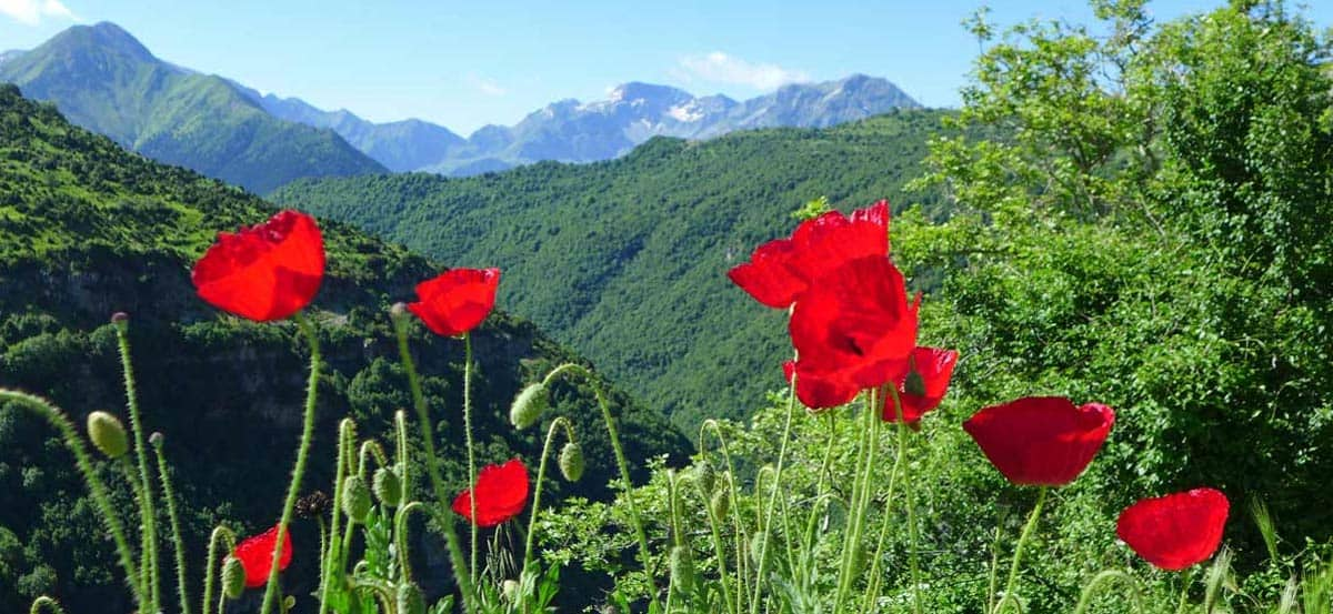 Hiking in Greece: Journey to the Mountain Village of Syrrako