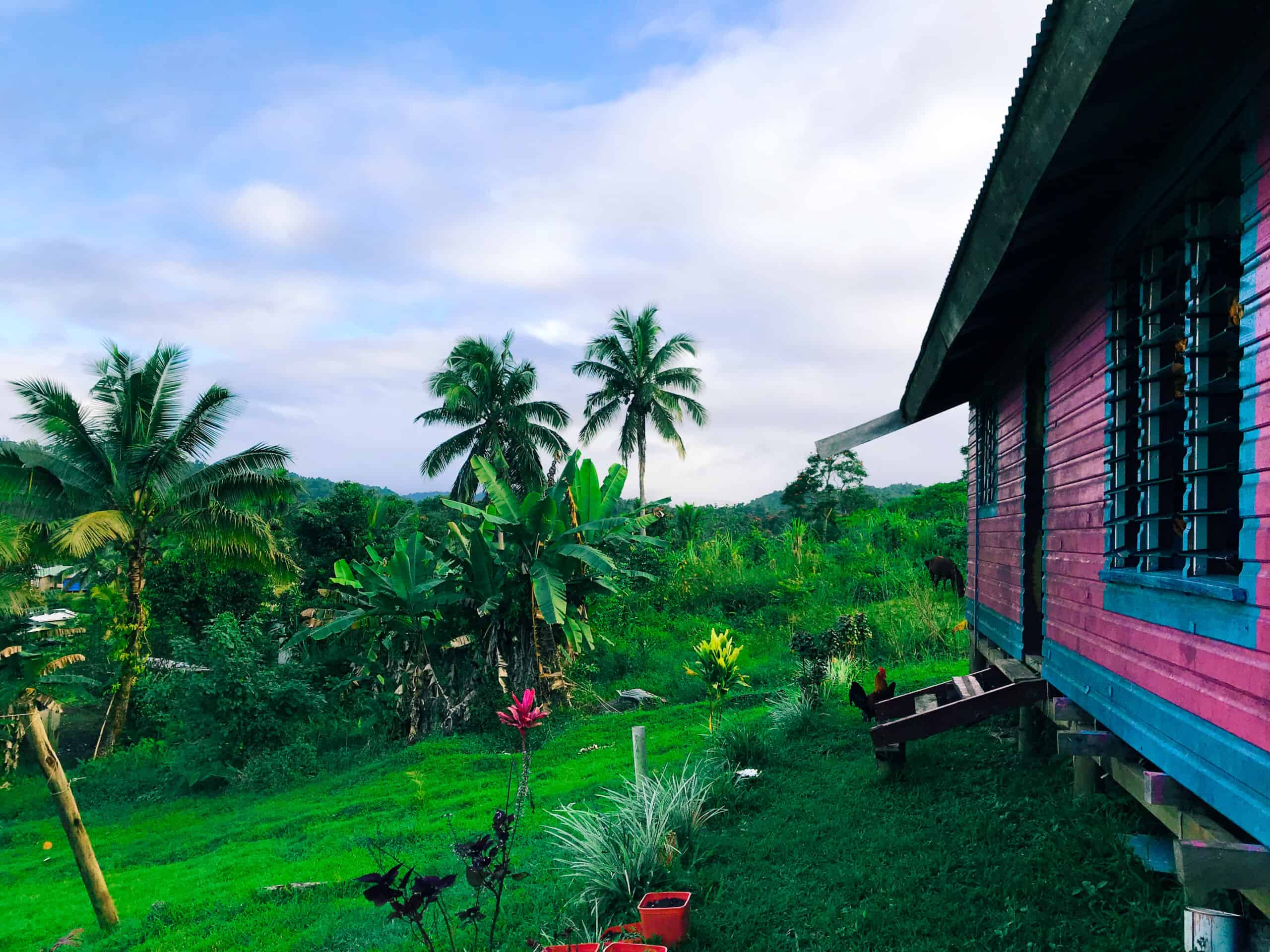 Pink and Blue house in Fiji