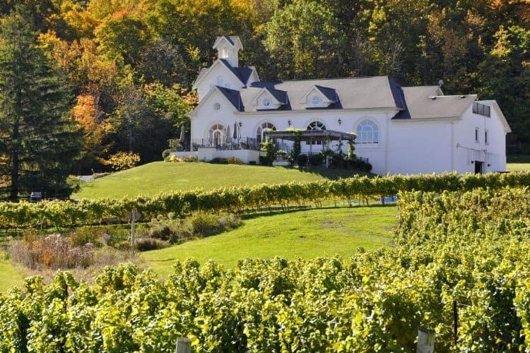 Niagra Ontario Wine Region