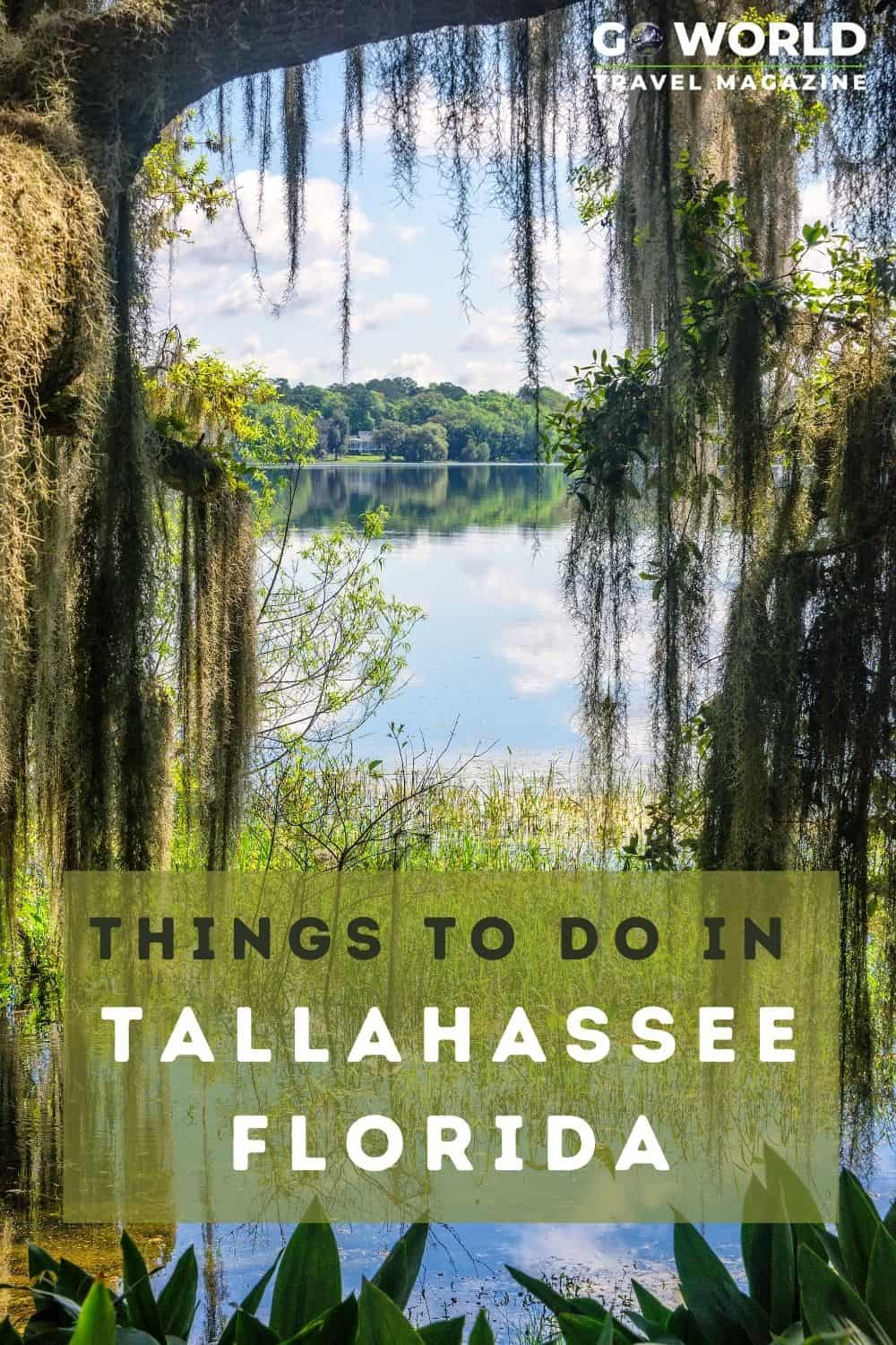 Tallahassee, Florida is best known as a college town but there's so much more. Here's a  list of fun & unexpected things to do in Tallahassee.