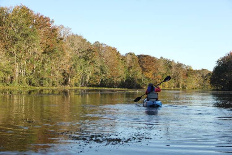 Kayaking in Tallahassee