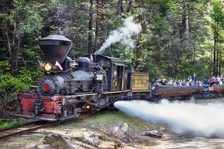 The Sugar Pine Railroad transports you through decades of lumber industry history in Sierra National Forest. Photo courtesy of Visit Yosemite/Madera County