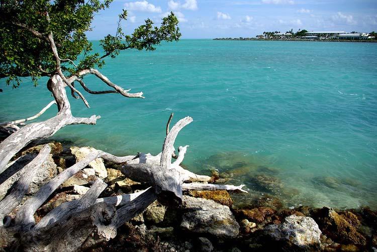 Ocean views at Bahia Honda State Park