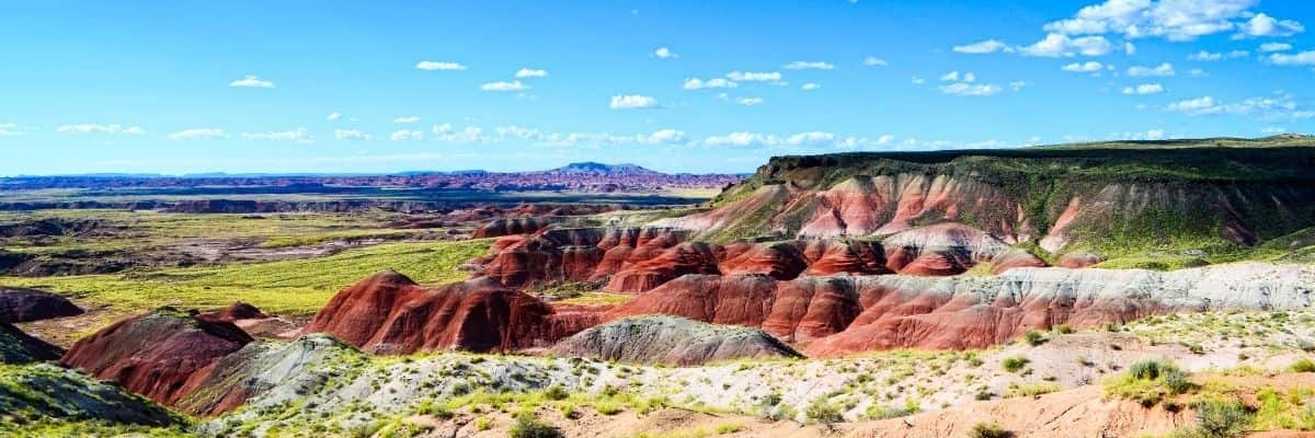 Why You Must Visit the Arizona Petrified Forest National Park