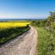 Baltic Trails Hiking