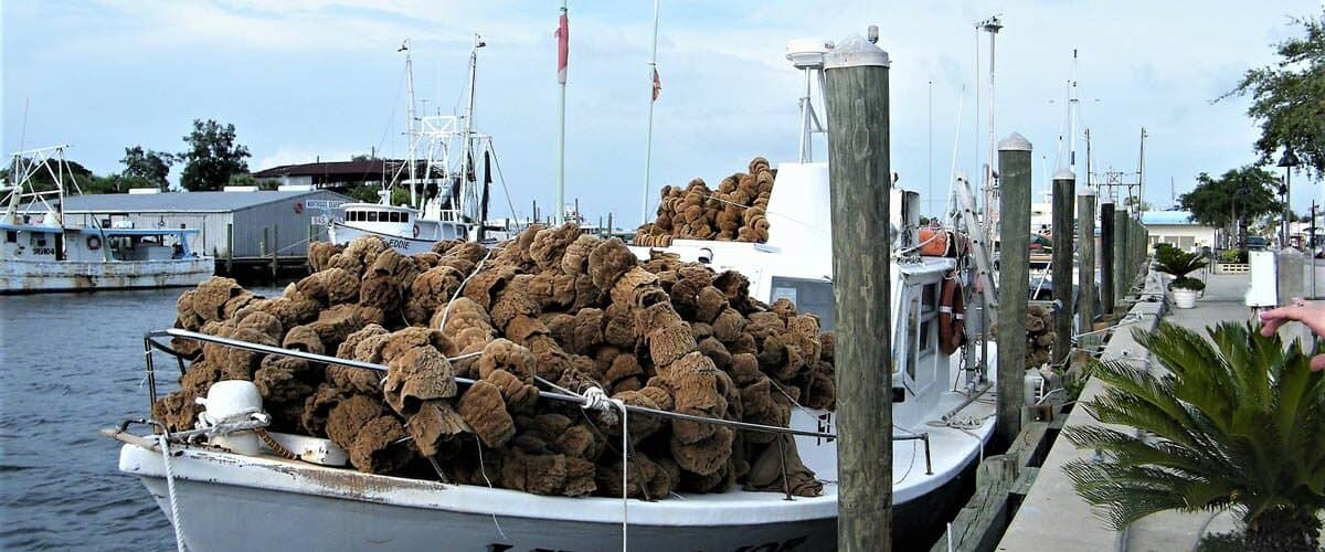 Sponge boats are a familiar site in Tarpon Springs, Florida. Photo by ExploreTarponSprings.com