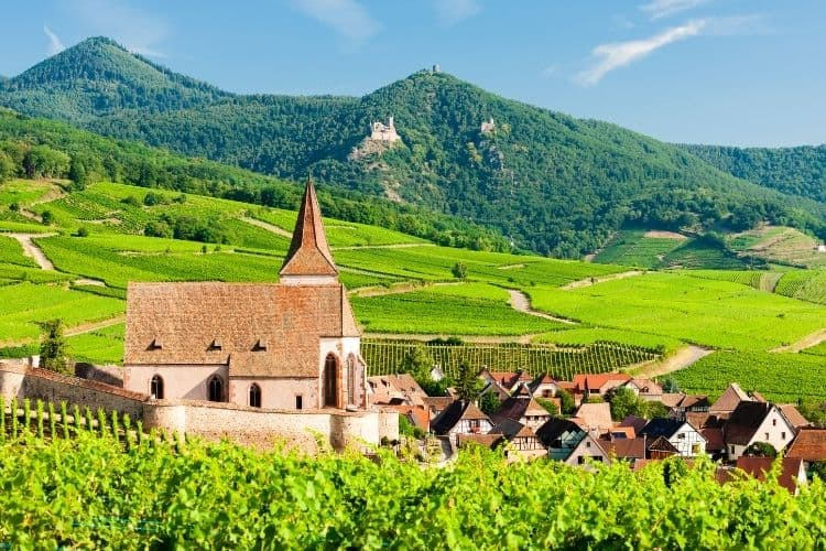 Alsace is a top wine region in France