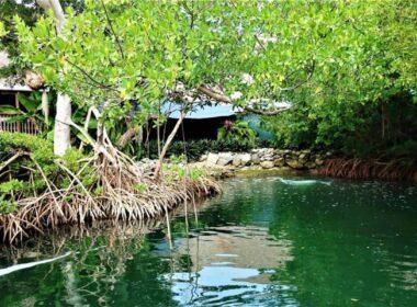 Lagoon at Aquarium Encounter in Marathon Key, Florida. Photo by Victor Block