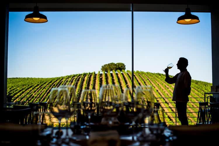 Wine tasting in Alentejo, Portugal