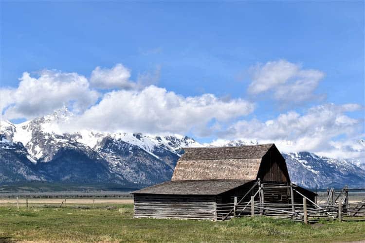 Yellowstone Roadtrip Grand Mormon Row with Grand Tetons backdrop