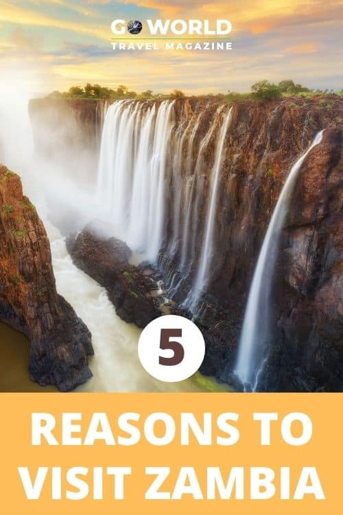 Zambia is one of those rare countries that everyone should visit at least once in their life. Why? Here are 5 amazing things to do in Zambia. #TravelAfrica #Zambia #Africansafari