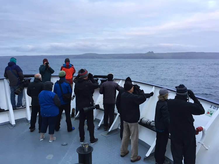 Birdwatchers sail far and wide to peer at the rare species. Photo by Agami Photo Agency/Dreramstxime