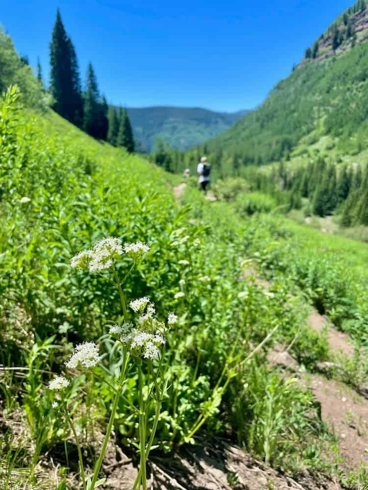 Hiking in Vail, Colorado by Benjamin Rader