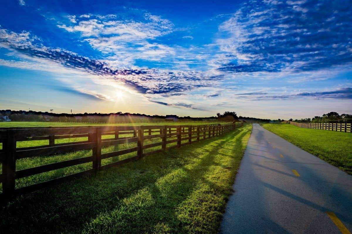 Things to do in Lexington Kentucky: Bourbon, Horses, History & More