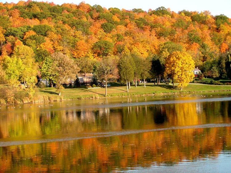 Fall colours reflected in lake near Frankford Ontario