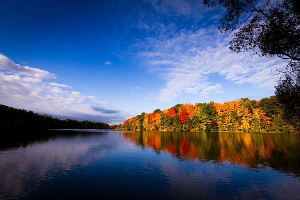 See the Fall Colours in Ontario Canada With This List of Scenic Drives