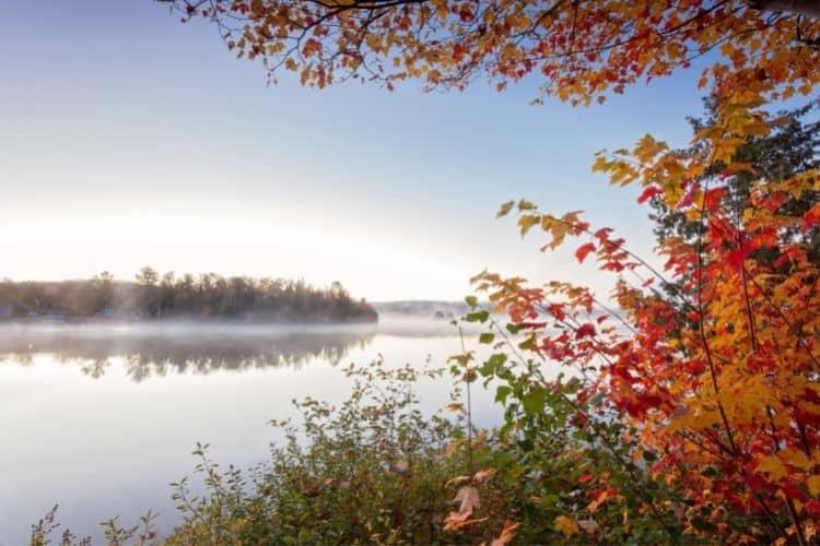 Fall colours in Ontario Presqu'ile Provincial Park