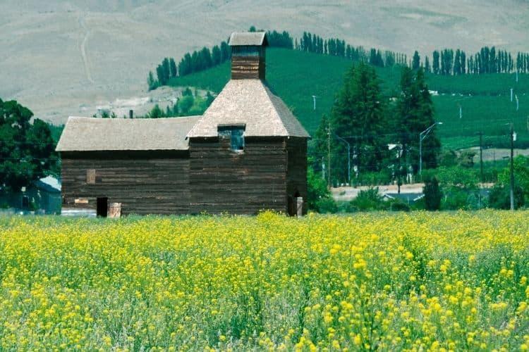 Yakima Valley farmstead