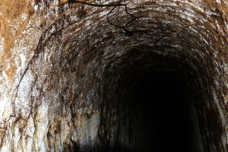 Petrovaradin Fortress catacombs
