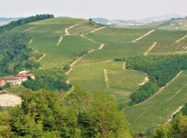Piedmont scenery. Photo by Victor Block