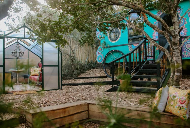 Treedom Accommodation on the Garden Route
