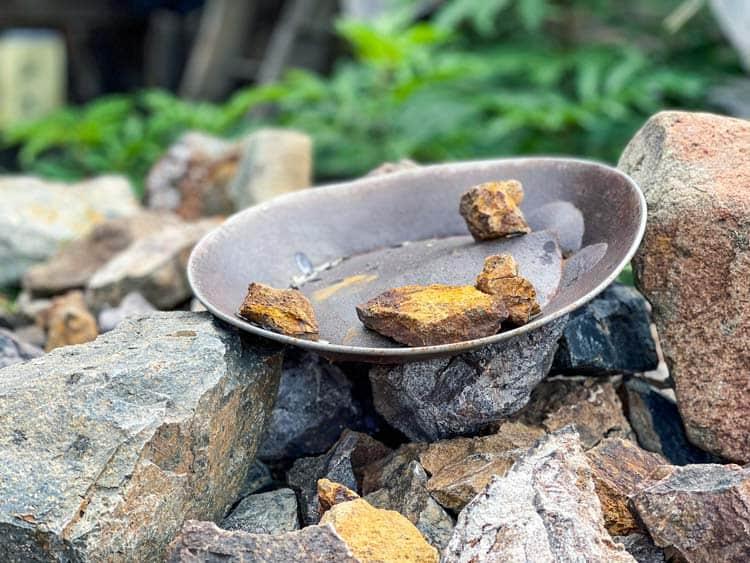Pan of gold rocks in Breckenridge, CO